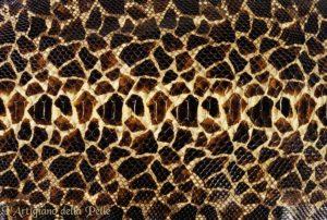 Python Leather