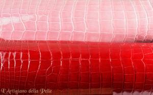 Shiny Crocodile Leathers